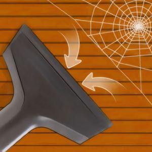 Методы и способы избавления от пауков