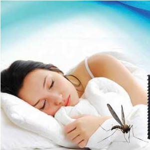 Почему дома появляются комары