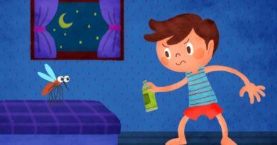 Самые эффективные методы избавления от комаров в квартире