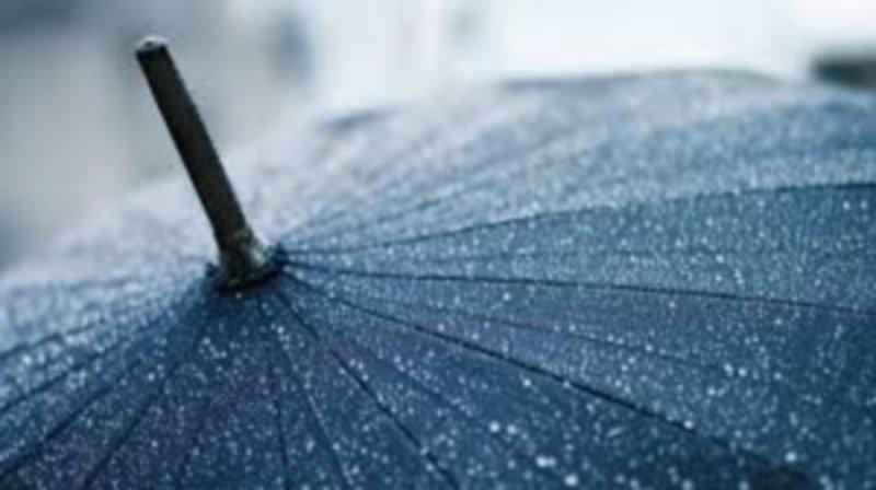 Чистка черных зонтиков