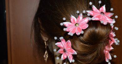 Канзаши для волос