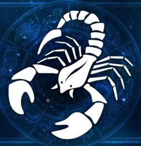 Осторожно – скорпионы