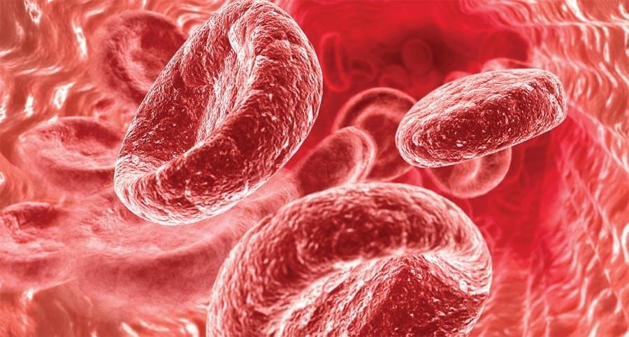 Какая норма гемоглобина в крови