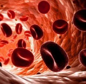 Гемоглобин: норма у женщин по возрасту, таблица