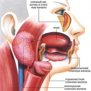 причины воспаления слюнных желез