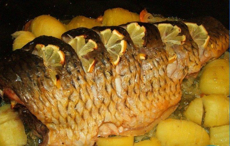 Mackerel in the oven
