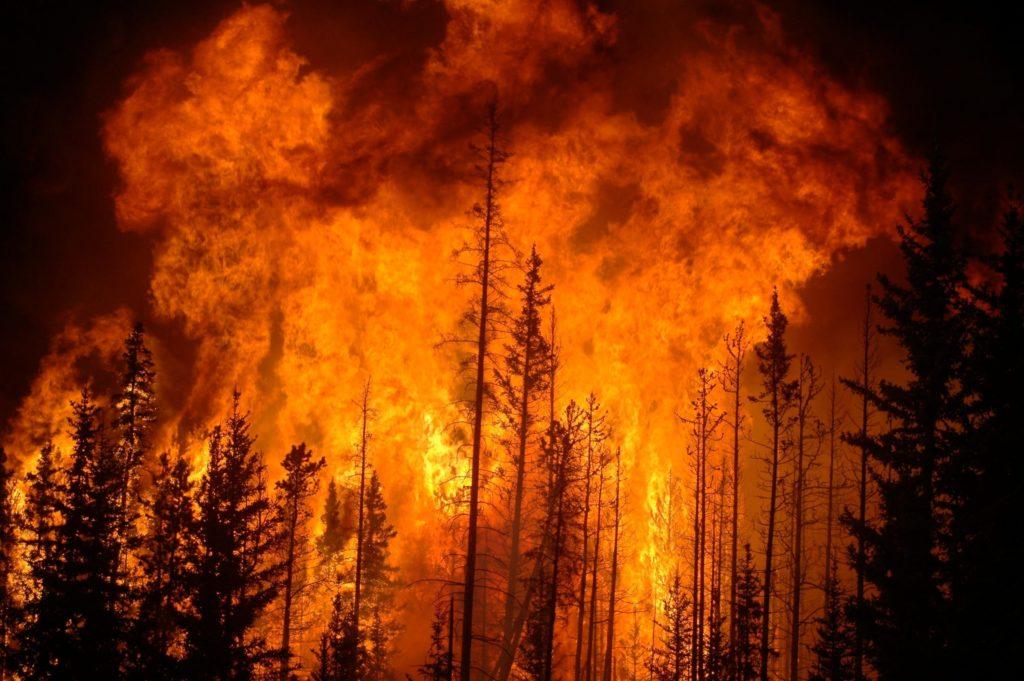 К чему снится пожар сонник ванги
