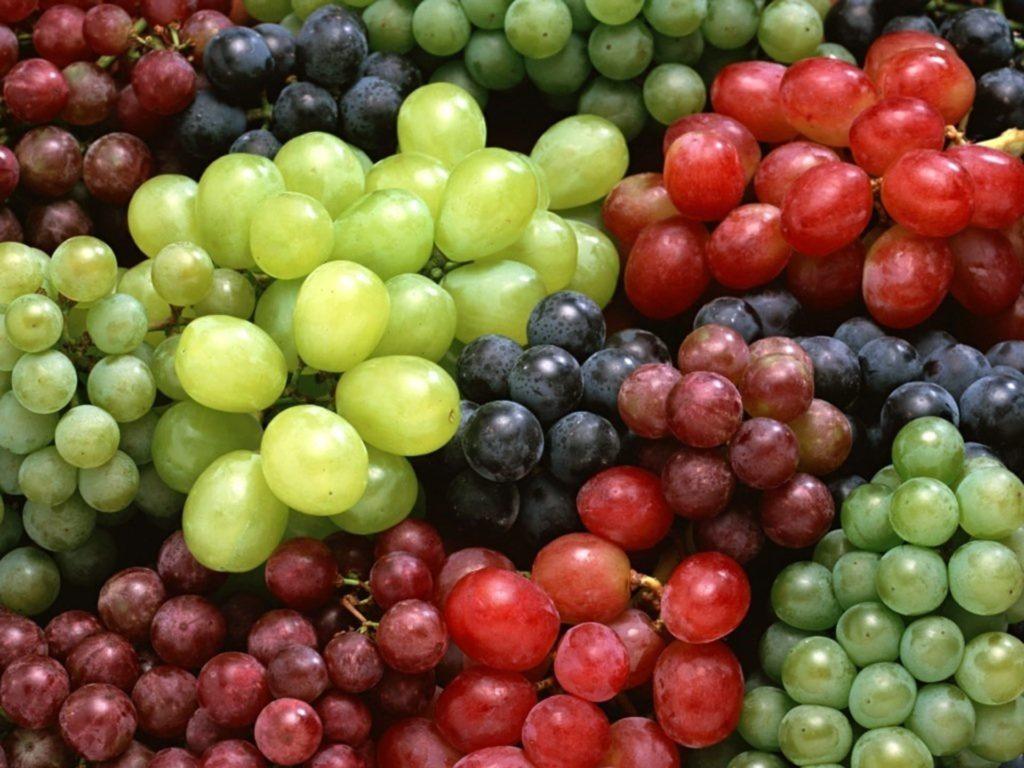Особенности ягод