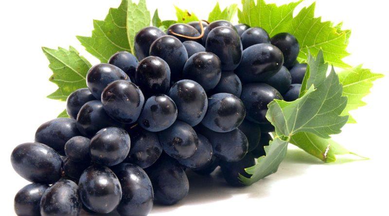 Снится виноград