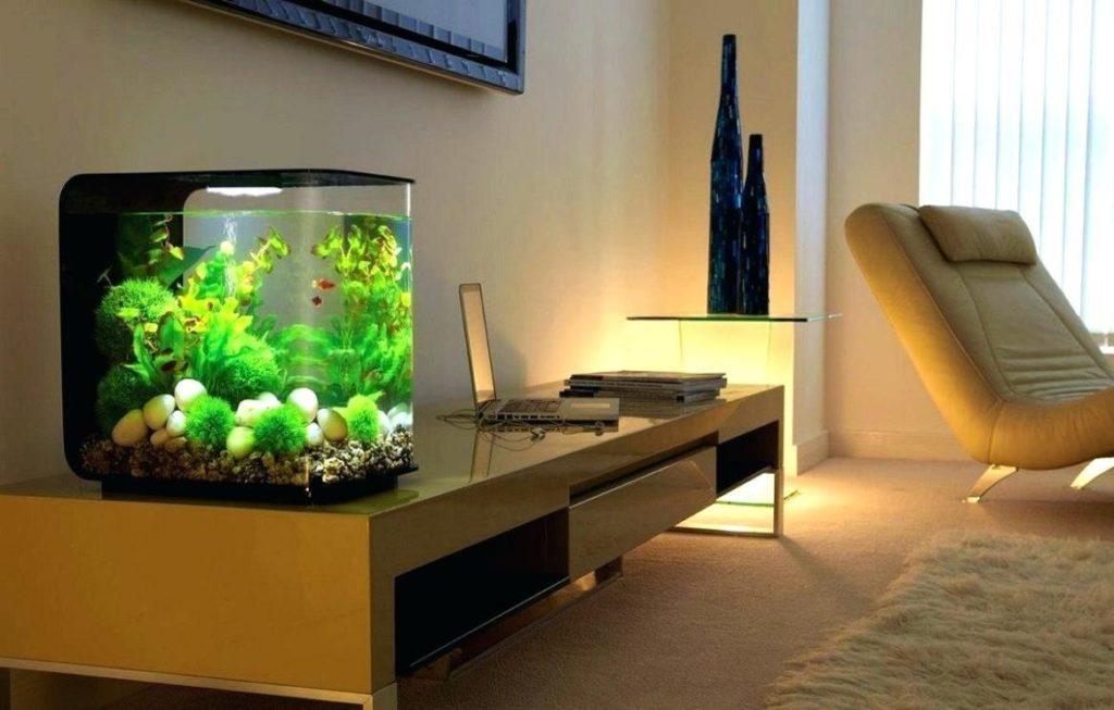 Методы увлажнения воздуха в квартире