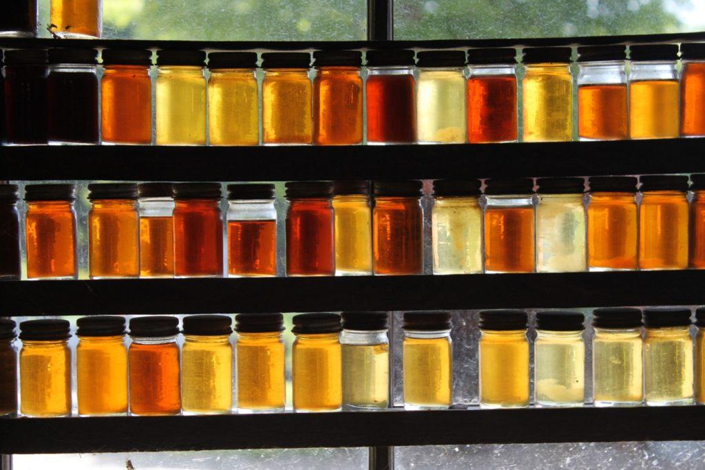 Основные виды и сорта мёда