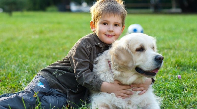 Собака детям