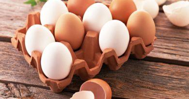 Срок хранения яиц