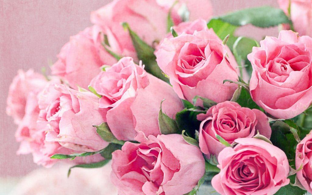 Полезные советы от флористов
