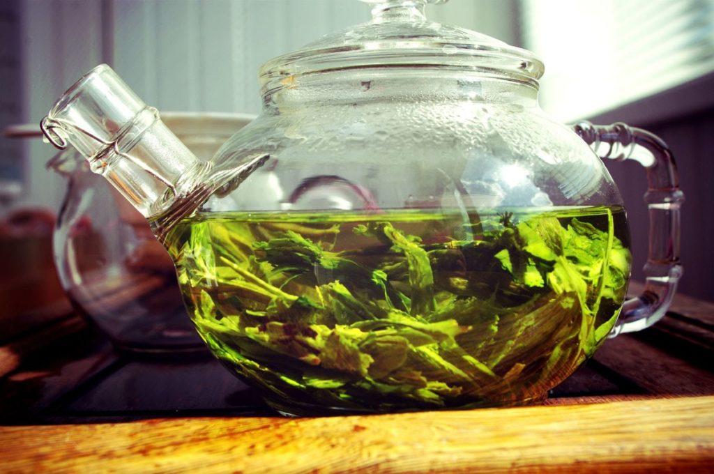 Зелёный чай и правила его заваривания
