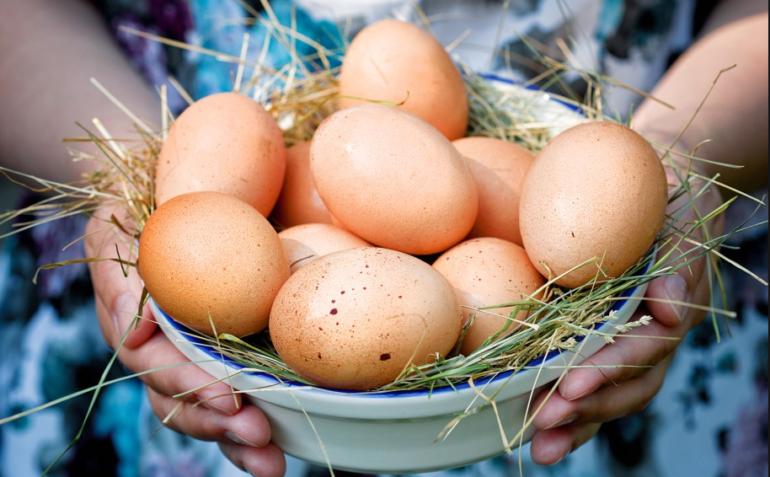 Особенности яиц во сне