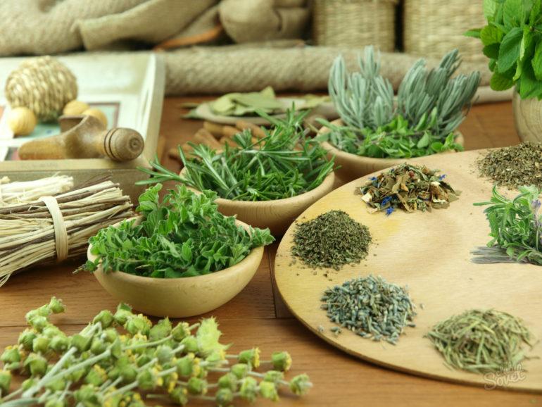 Польза и вред мочегонных трав