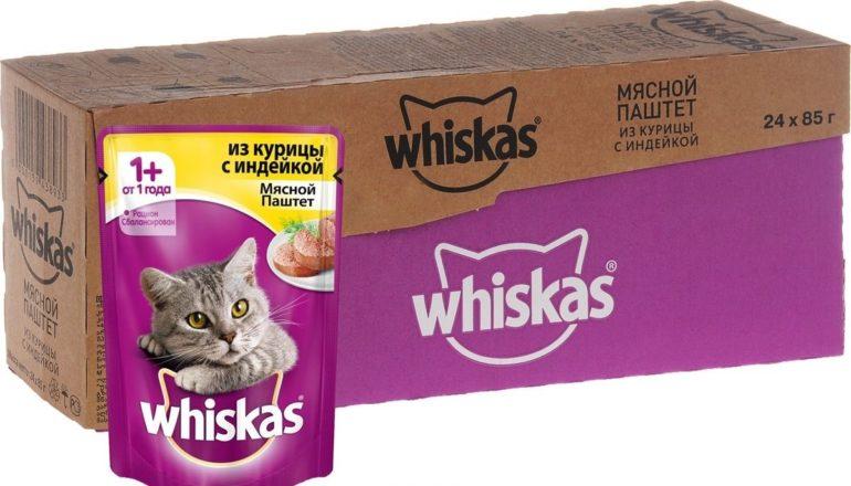 Лучшие корма для кошек эконом-класса