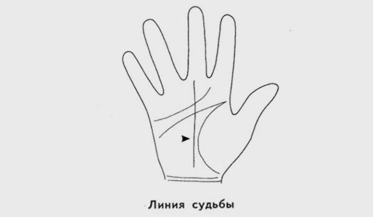 Главные линии на руке