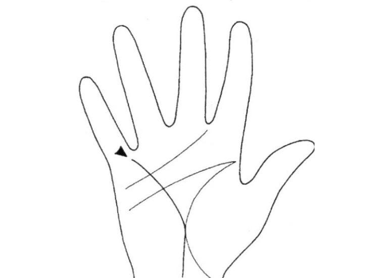 Линии на руке у человека