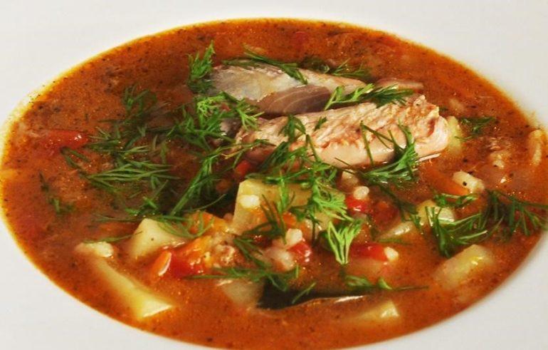 Рецепты рыбного супа