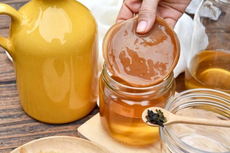 Особенности применения чайного гриба