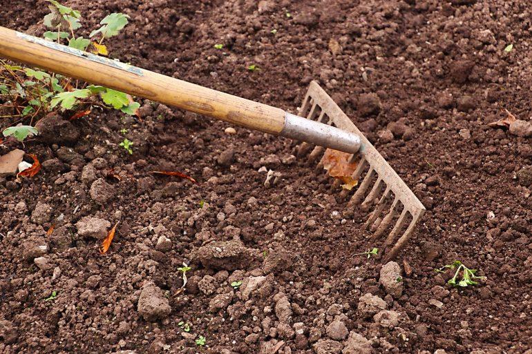 Требования к почве