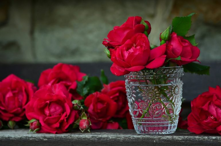 Розы по Фрейду