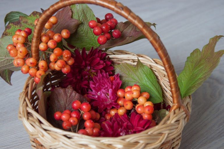 Состав ягод