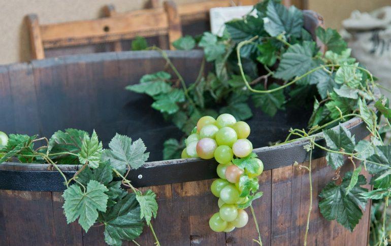 Смотреть на изготовление вина