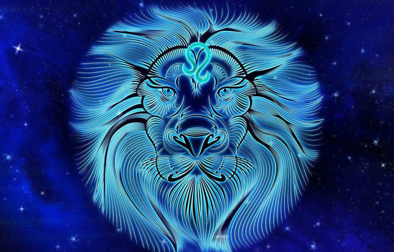 Что ждет Львов в год Крысы