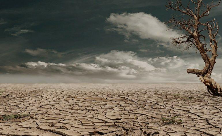 Сон с пустыней